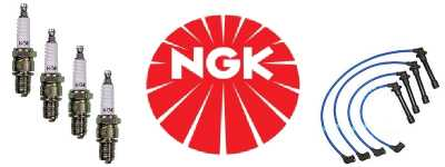 NGK and Guy's Automotive auto repair in Tampa Florida